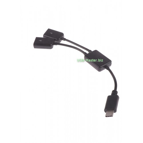 Type-C Хаб на 2 USB порта